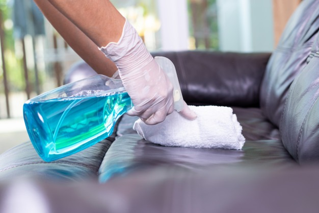 leather cleaning sofa techniques