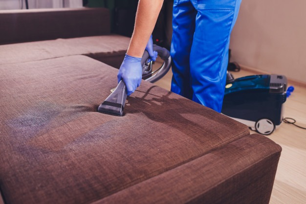 Showing Sofa cleaning process